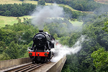 Steam & Diesel Trains