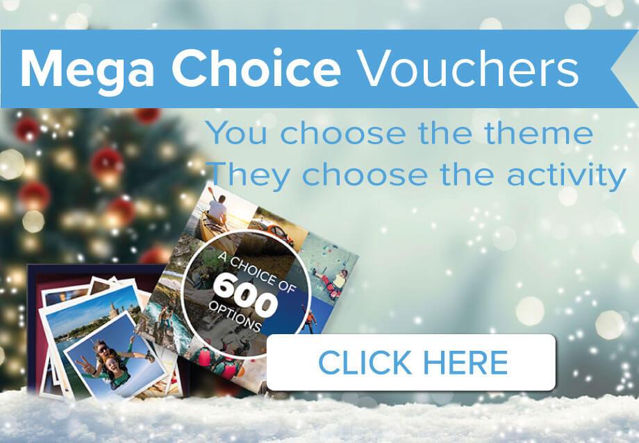 Mega Choice