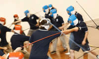 Fencing Experience