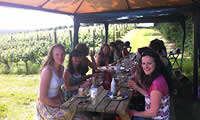 Deluxe Vineyard Tour and Tasting for Two