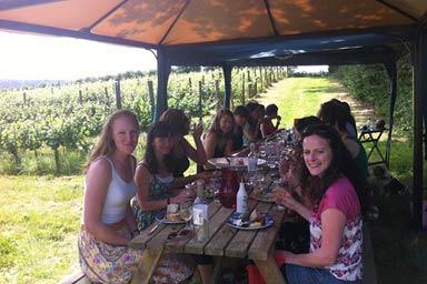 Vineyard Tour & Lunch Thumb