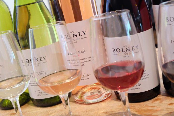 Tour and Tasting at Bolney Estate