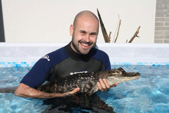 Swimming with the Crocodiles for Two