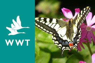 Wildfowl & Wetlands Trust Membership
