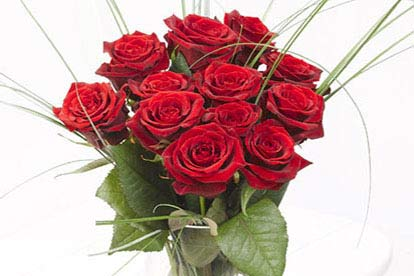 Image of 12 Rose Bouquet
