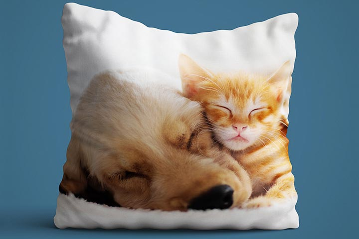 Personalised Pet Photo Cushion