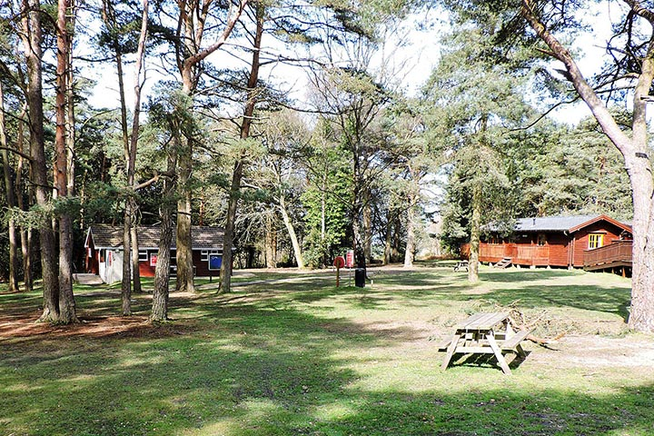 2 Nights New Forest Lodge Break