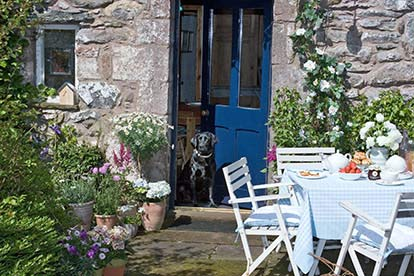 'Dog Friendly Cottages' £50 Credit