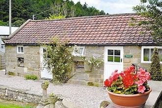 'Dog Friendly Cottages' £50 Credit