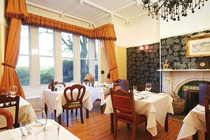 Suite Dreams Escape to Ashmount Country House