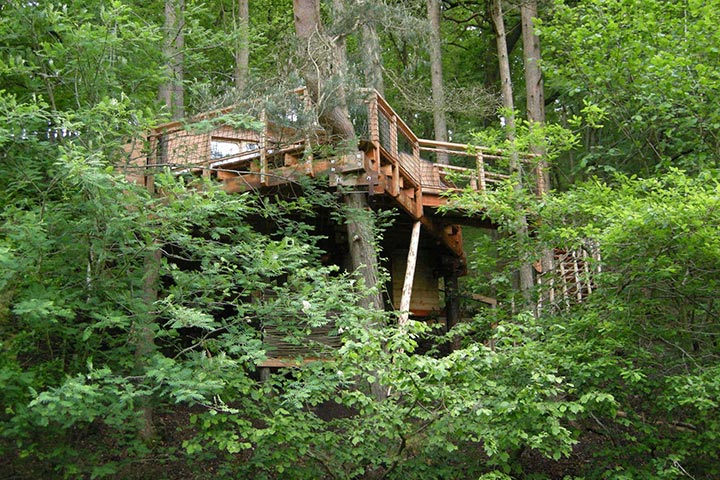 Two Night Tree House Escape for 2