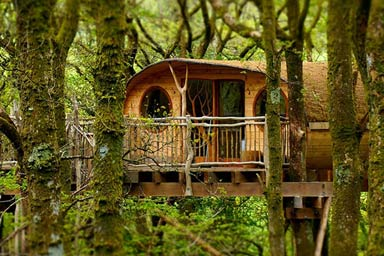 Click to view details and reviews for Two Night Tree House Escape For Two.