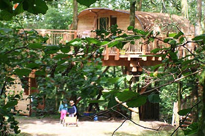 Three Night Family Tree House Escape