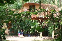Click to view details and reviews for Three Night Family Tree House Escape.