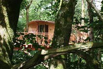 Three Night Tree House Escape for Two