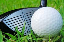 Click to view details and reviews for Golfers Choice.