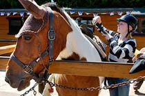 Half Day Western Horse Ride with BBQ