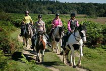 Click to view details and reviews for Half Day Western Horse Ride With Lunch For Two.