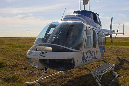 Junior Helicopter Buzz