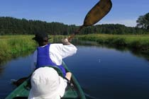 Half Day Kayak or Canoe Experience Thumb