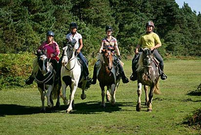 Full Day Western Riding Experience