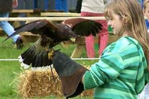 Click to view details and reviews for Hands On Animal Experience For Two.
