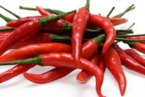 Chilli Experience for Two Thumb