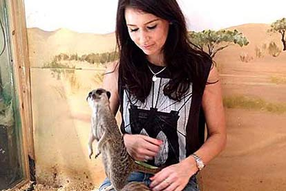 Meerkat Encounter for Two