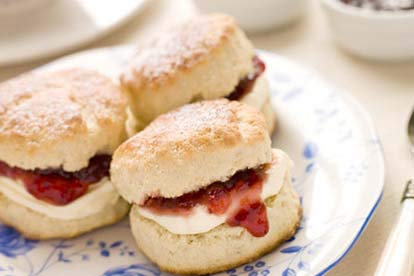 Vineyard Tour & Tasting with Cream Tea for Two
