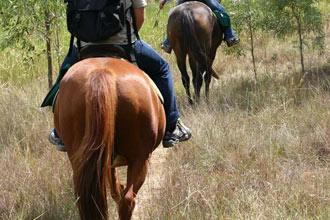 Western Horse Ride Trail