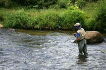Click to view details and reviews for Fly Fishing.