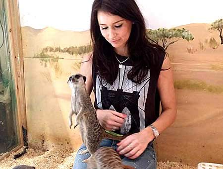 Meerkat Experience For Two and Adoption Pack