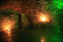 Click to view details and reviews for Underground Tour For Four.