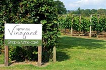 Click to view details and reviews for Vineyard Tour With Sparkling Afternoon Tea For Two.