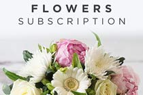 Click to view details and reviews for 3 Month Flower Subscription From Appleyard.