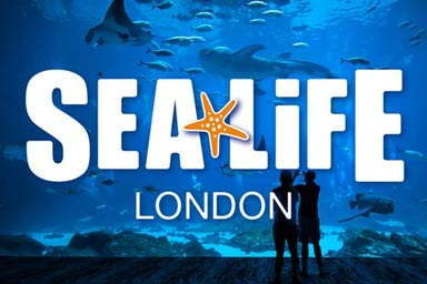 London SEA LIFE Aquarium and Lunch at Planet Hollywood for Two