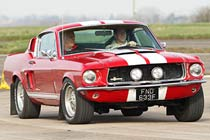 Mustang Fastback Thrill
