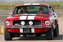 Mustang Fastback Thrill Thumb