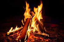 Click to view details and reviews for Introduction To Bushcraft.