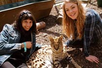 Half Day Animal Keeper Experience at Hoo Farm for Two